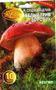 мицелий грибов порошковый
