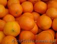 Продам мандарин(грузинский) Житомир.