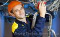 Работа в Венгрии для электриков, электромонтеров., Объявление #1597299